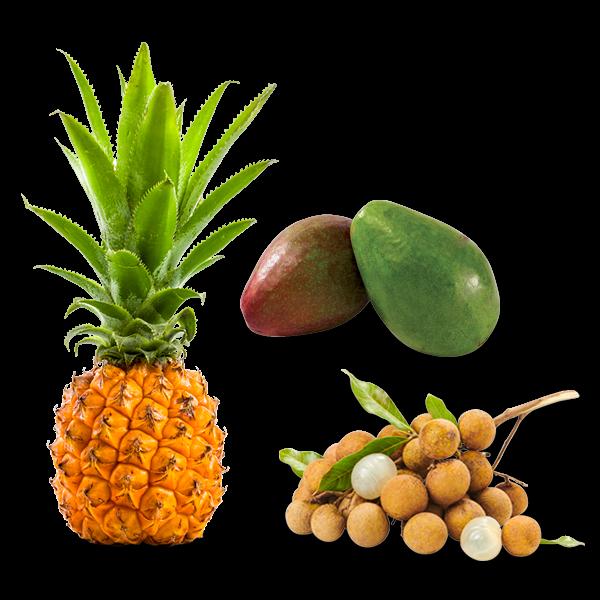 Avocat-Ananas-Longanis