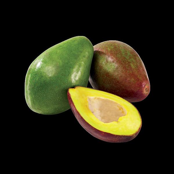 Avocats de La Réunion